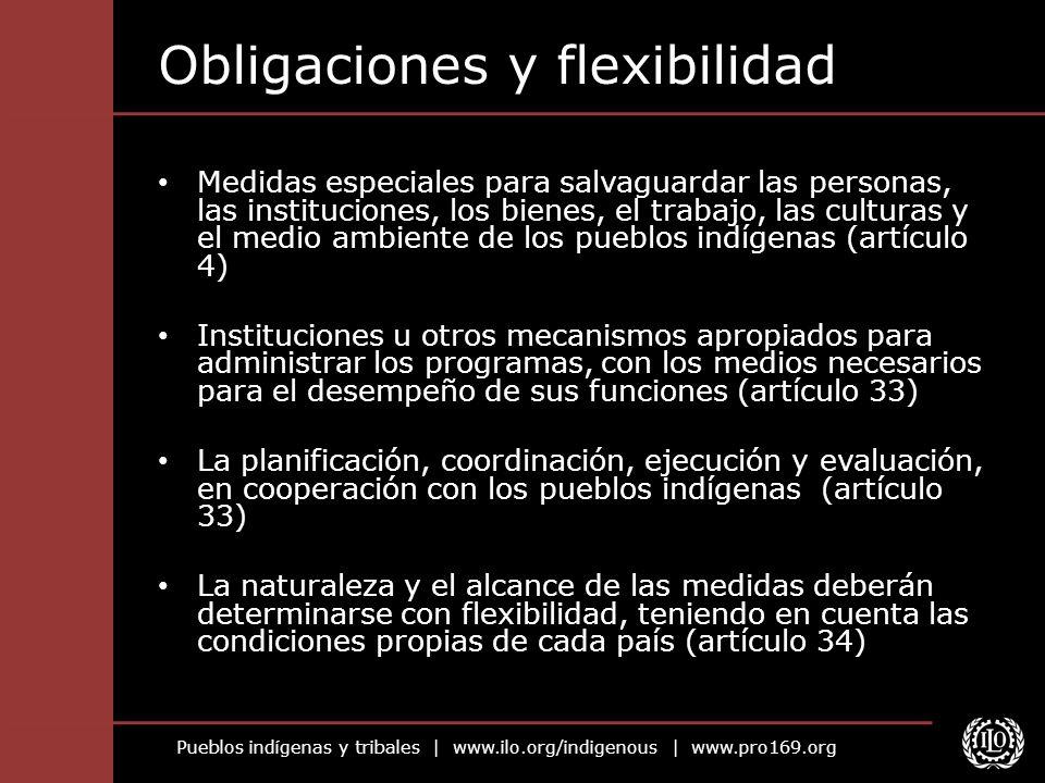 Obligaciones y flexibilidad