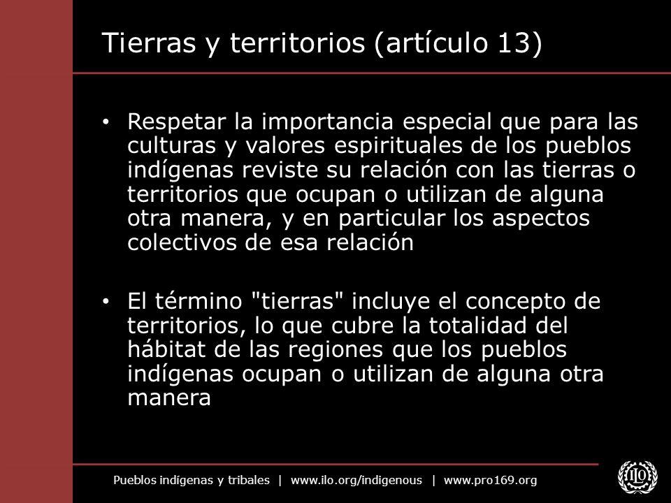 Tierras y territorios (artículo 13)