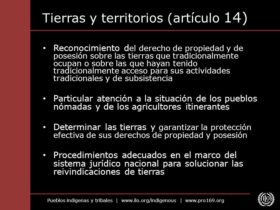Tierras y territorios (artículo 14)
