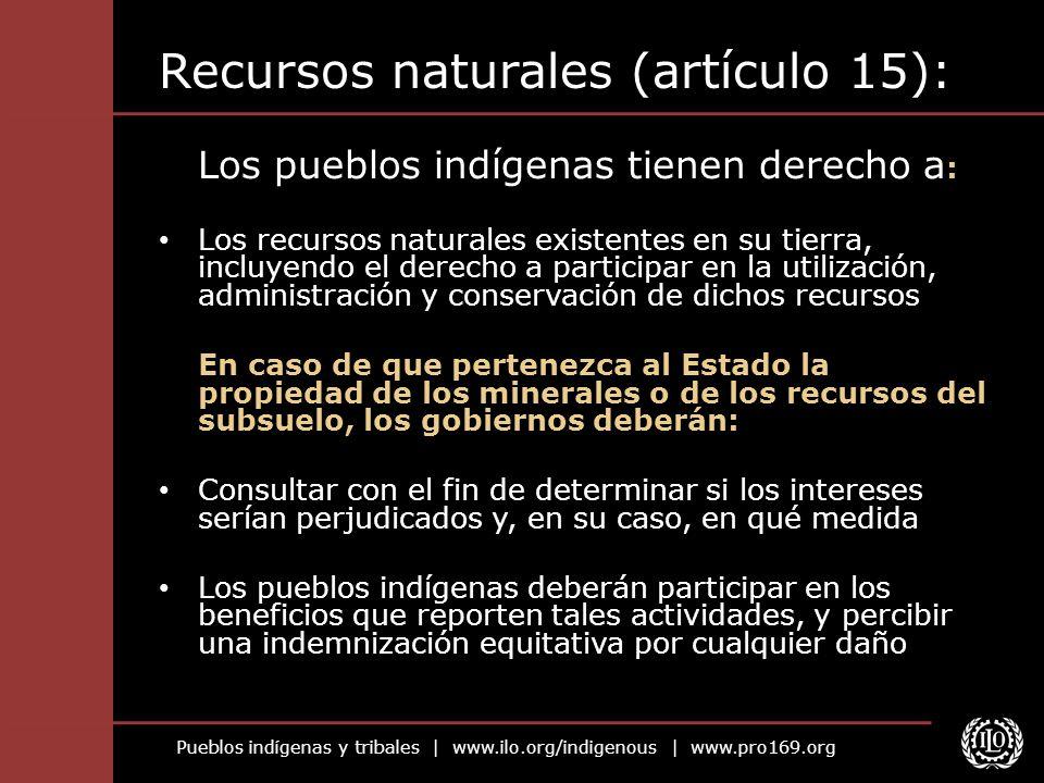 Recursos naturales (artículo 15):