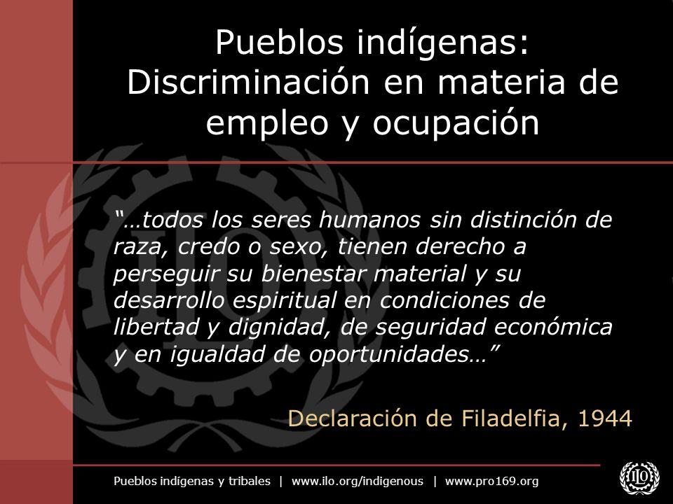 Pueblos indígenas: Discriminación en materia de empleo y ocupación