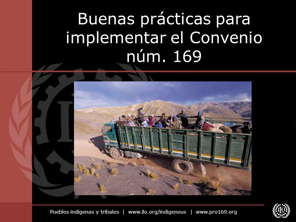 Buenas prácticas para implementar el Convenio núm. 169