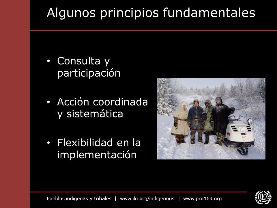 Algunos principios fundamentales