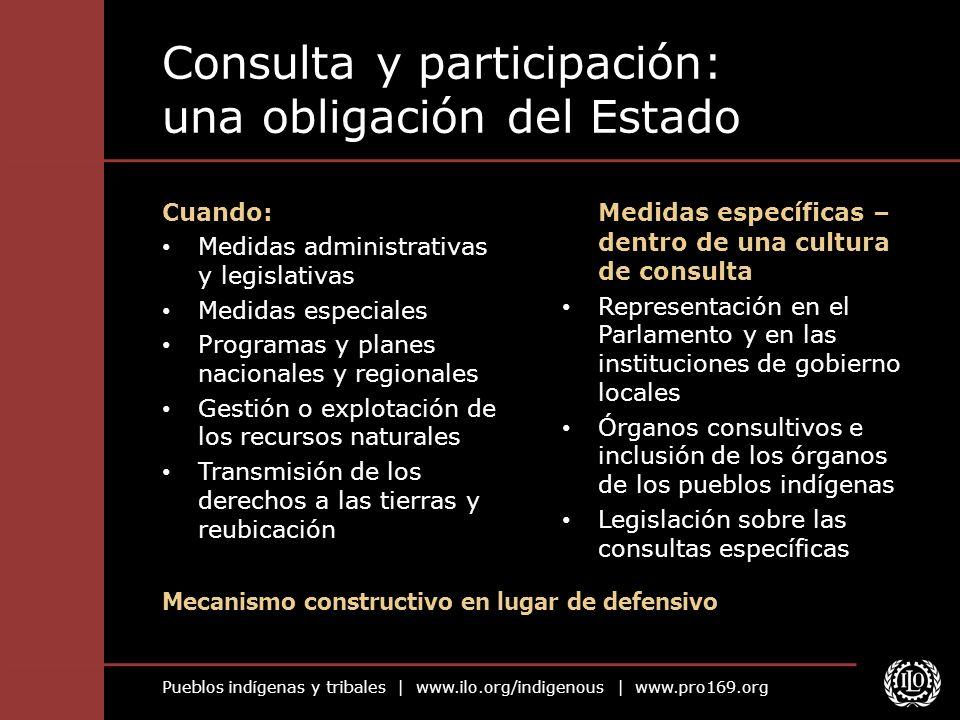 Consulta y participación: una obligación del Estado