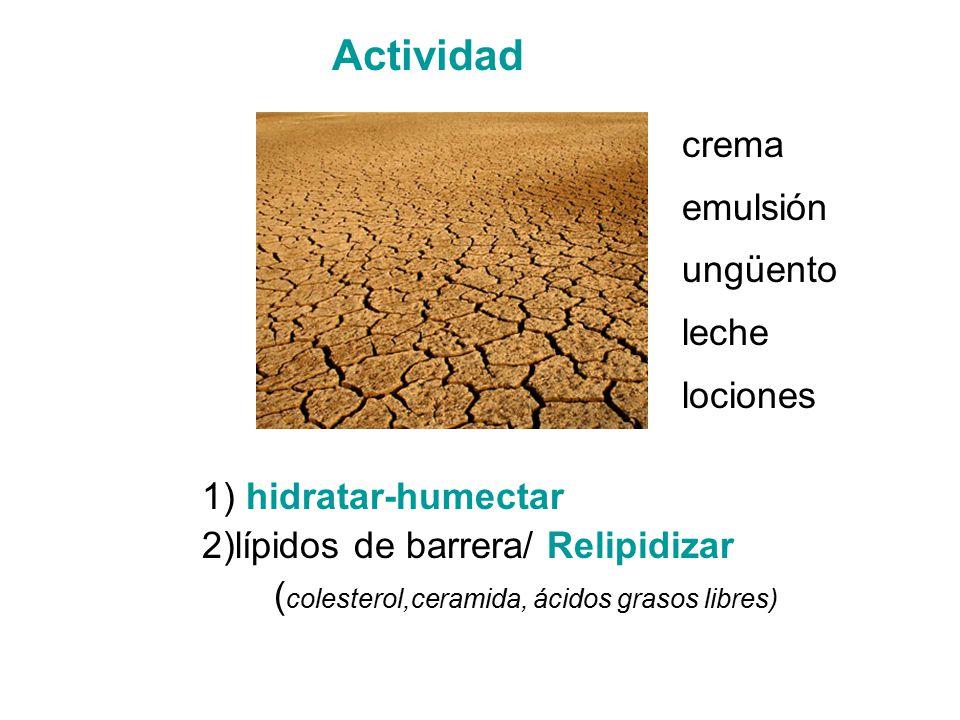Actividad crema emulsión ungüento leche lociones 1) hidratar-humectar