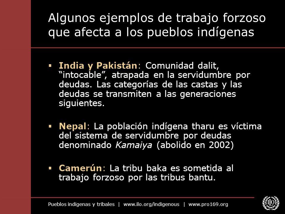 Algunos ejemplos de trabajo forzoso que afecta a los pueblos indígenas