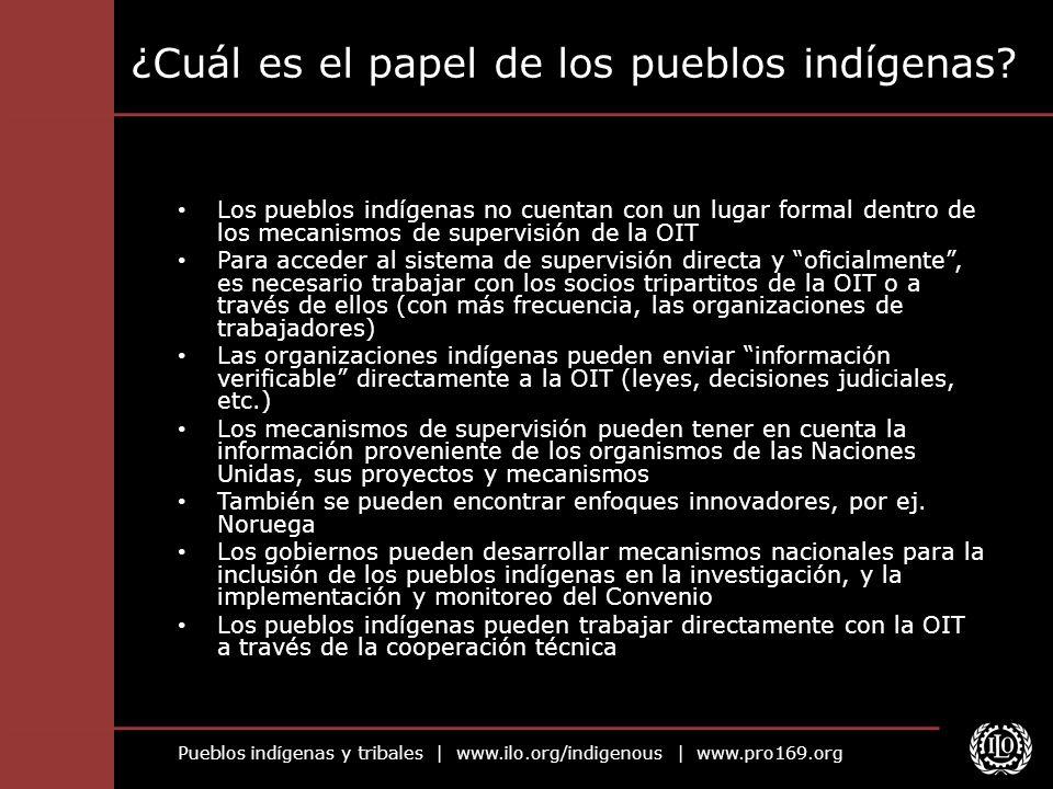 ¿Cuál es el papel de los pueblos indígenas