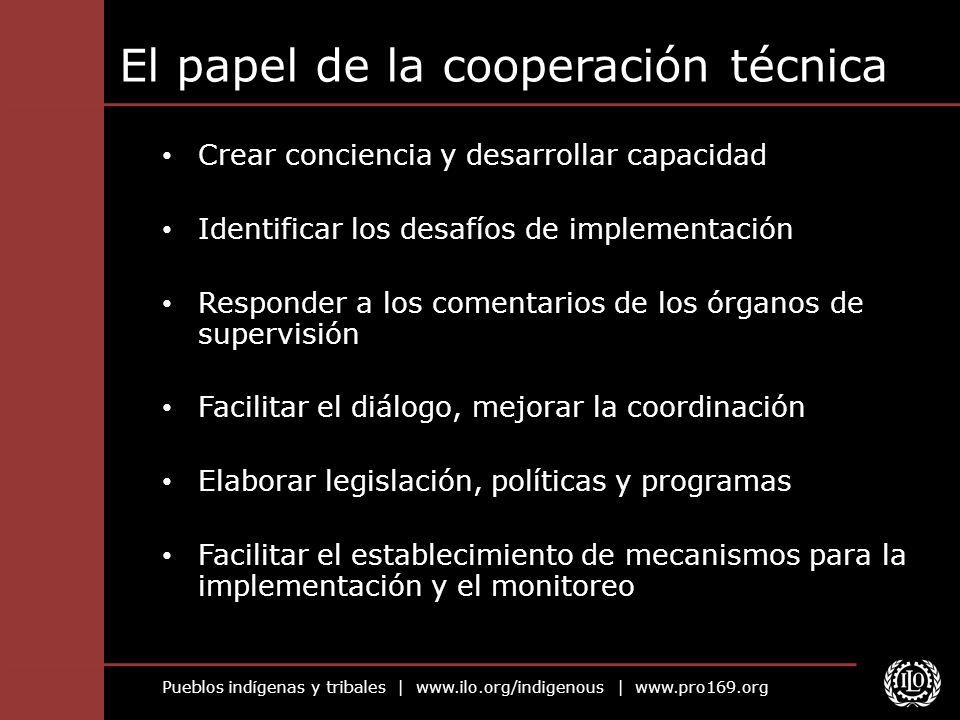 El papel de la cooperación técnica