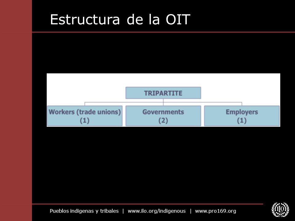 Estructura de la OIT