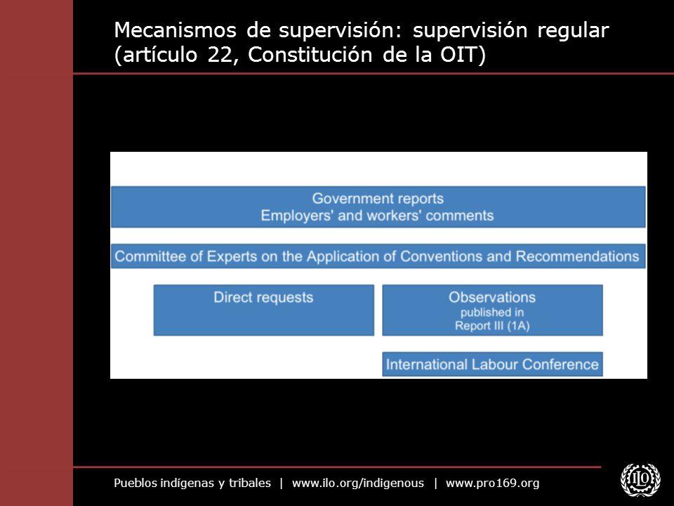 Mecanismos de supervisión: supervisión regular (artículo 22, Constitución de la OIT)