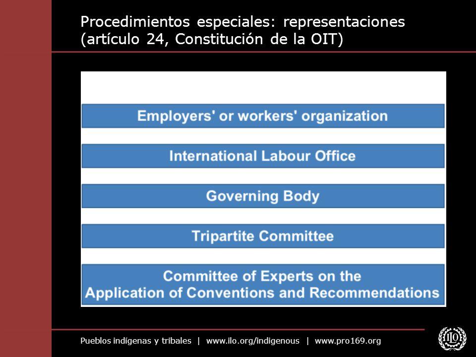 Procedimientos especiales: representaciones (artículo 24, Constitución de la OIT)