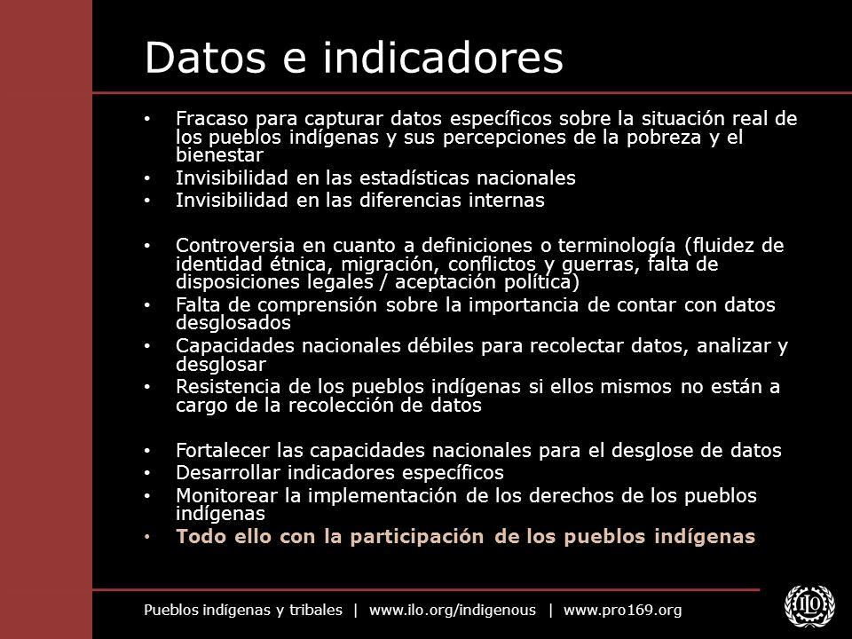 Datos e indicadores