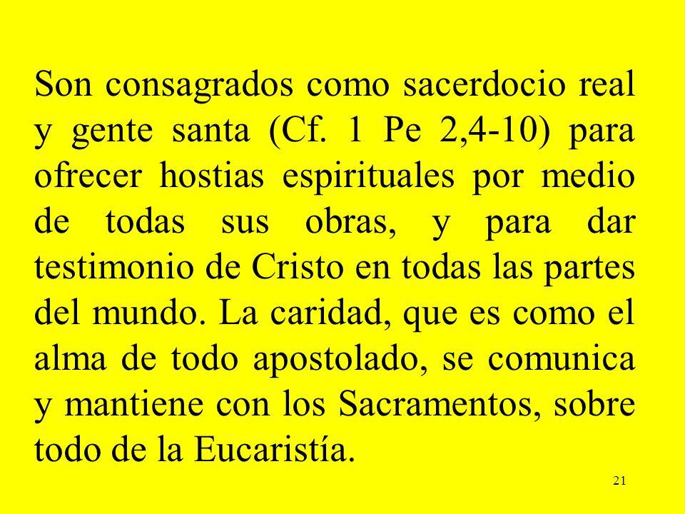 Son consagrados como sacerdocio real y gente santa (Cf