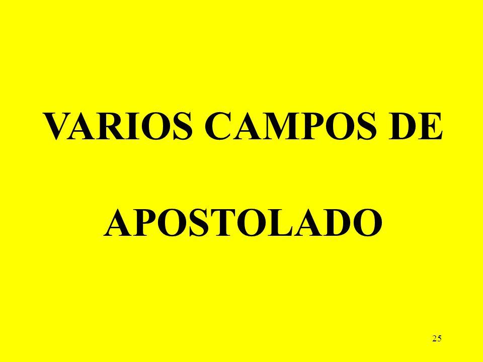 VARIOS CAMPOS DE APOSTOLADO