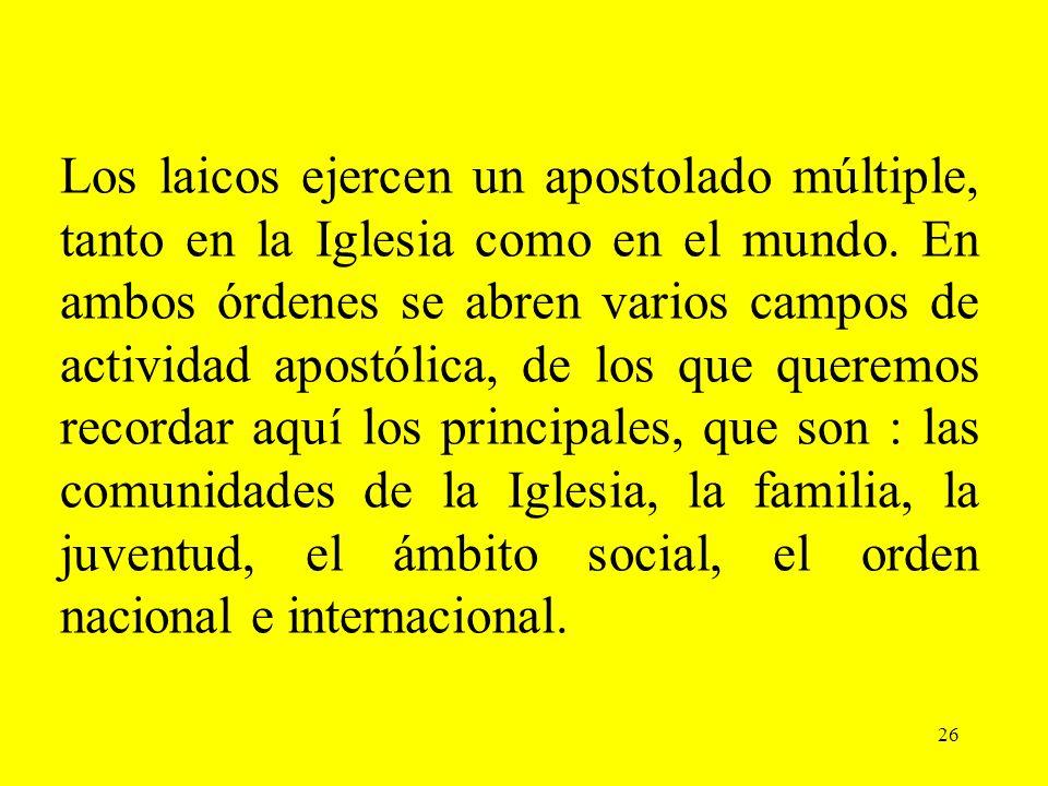 Los laicos ejercen un apostolado múltiple, tanto en la Iglesia como en el mundo. En ambos órdenes se abren varios campos de actividad apostólica, de los que queremos recordar aquí los principales, que son : las comunidades de la Iglesia, la familia, la juventud, el ámbito social, el orden nacional e internacional.