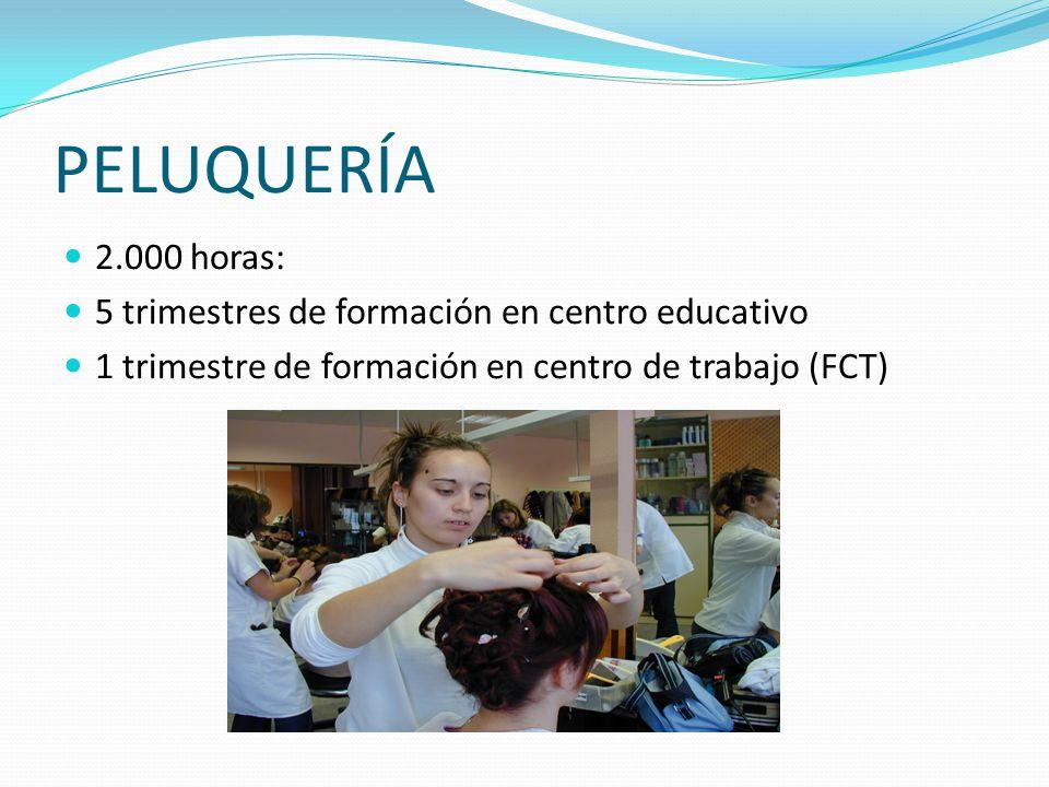 PELUQUERÍA 2.000 horas: 5 trimestres de formación en centro educativo