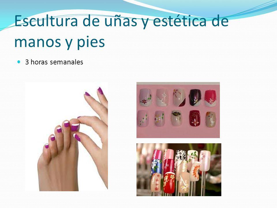Escultura de uñas y estética de manos y pies