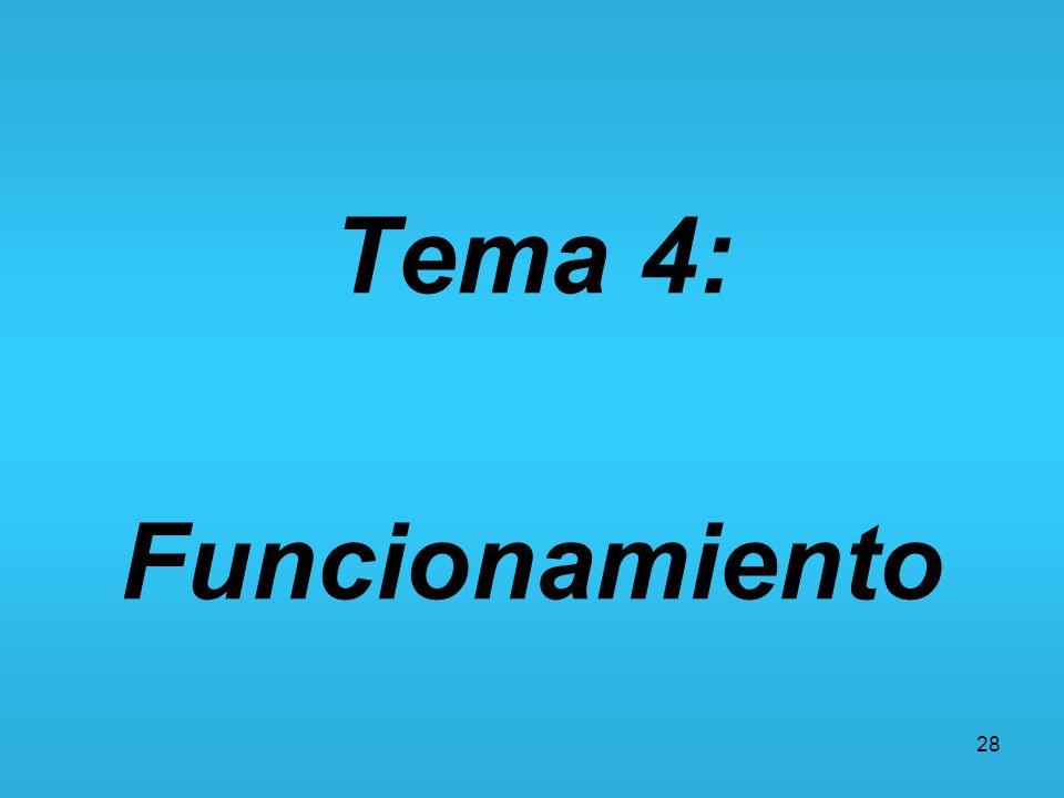 Tema 4: Funcionamiento 28