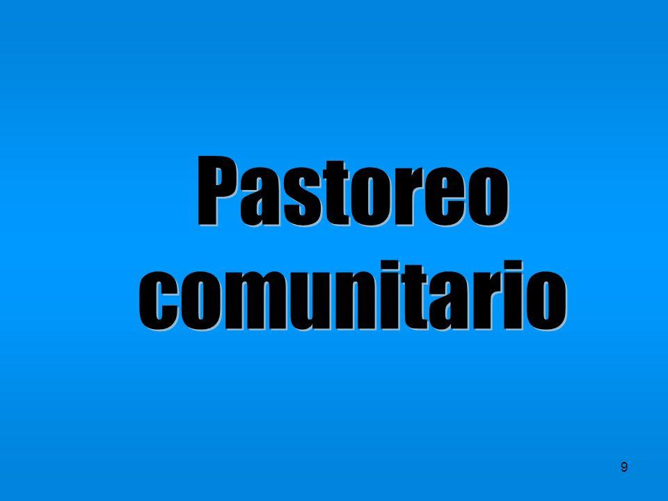 Pastoreo comunitario