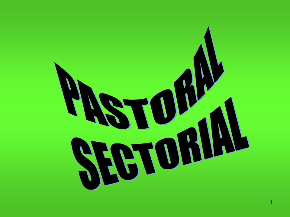 PASTORAL SECTORIAL