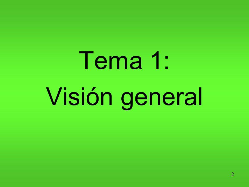Tema 1: Visión general