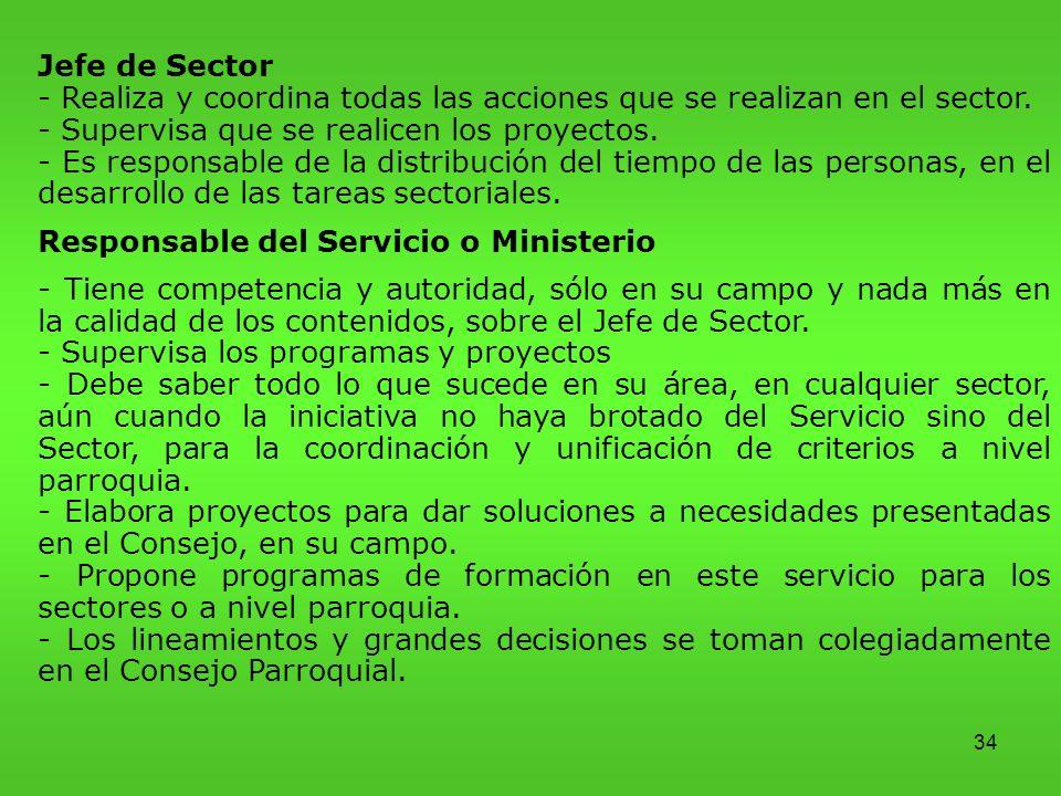 - Realiza y coordina todas las acciones que se realizan en el sector.