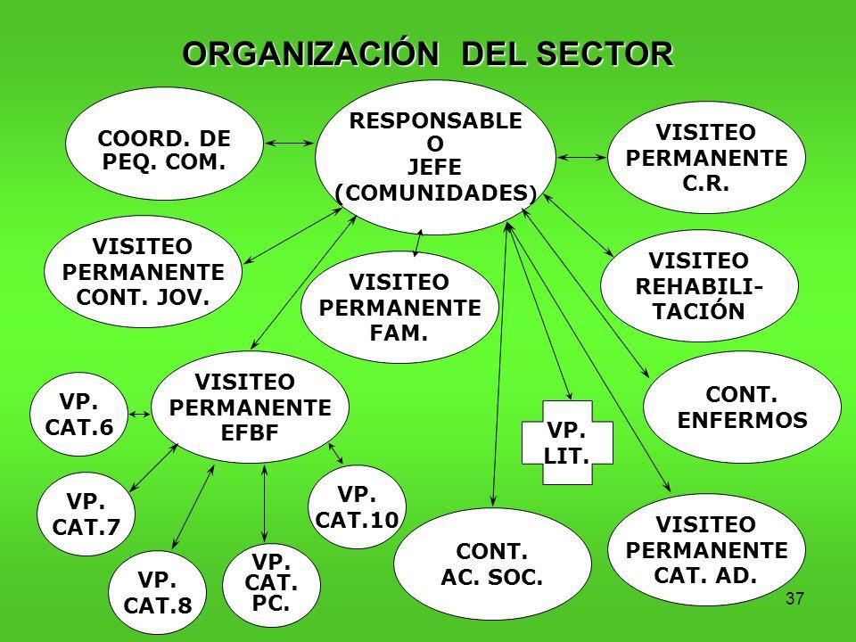 ORGANIZACIÓN DEL SECTOR