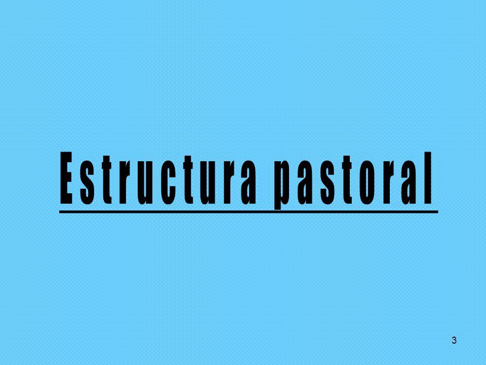 Estructura pastoral