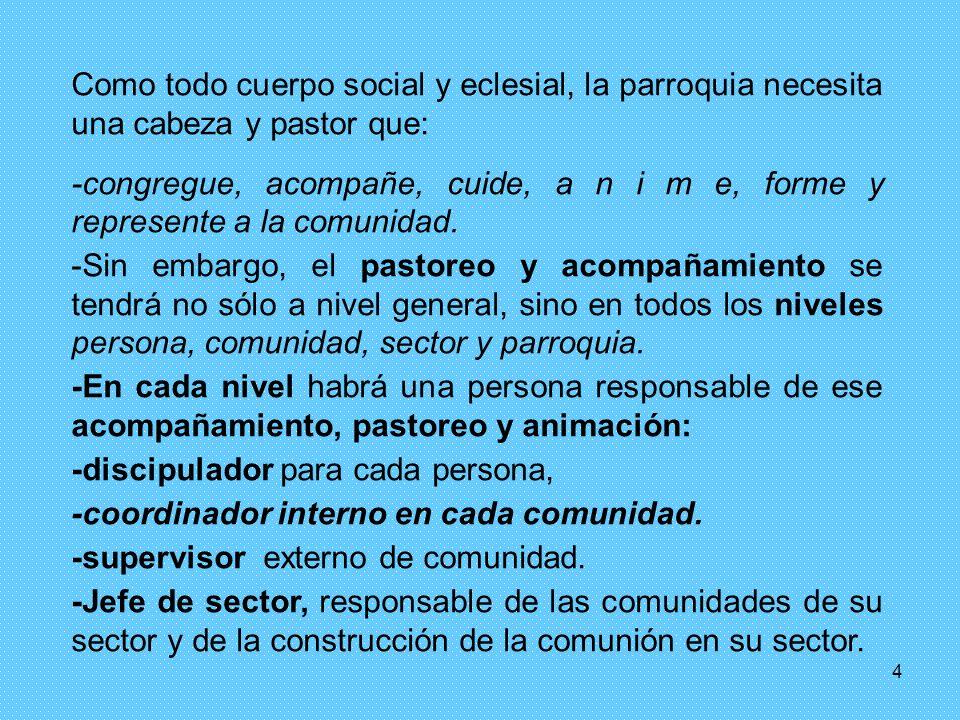 Como todo cuerpo social y eclesial, la parroquia necesita una cabeza y pastor que: