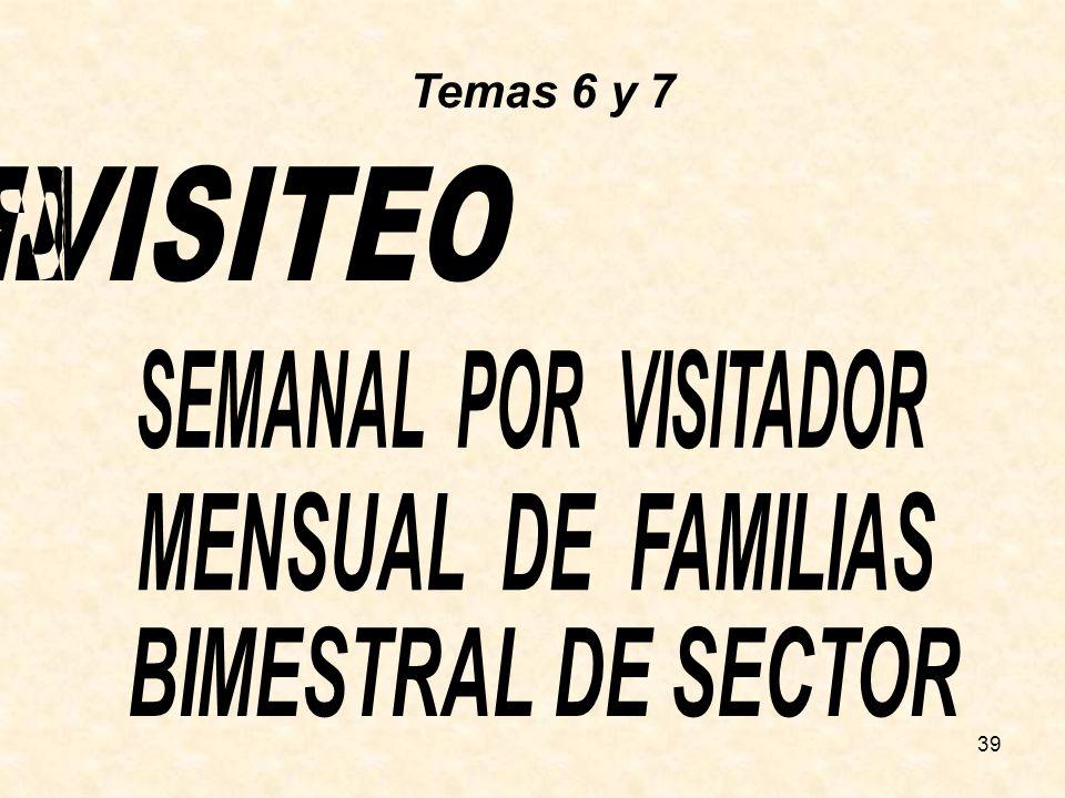 REPORTE DEL VISITEO SEMANAL POR VISITADOR MENSUAL DE FAMILIAS