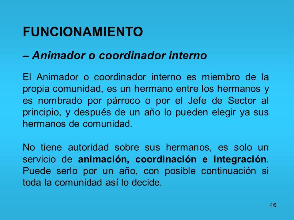 FUNCIONAMIENTO – Animador o coordinador interno