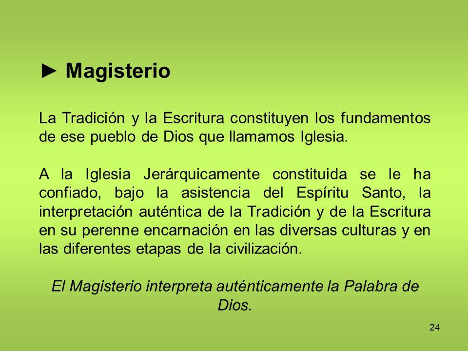 El Magisterio interpreta auténticamente la Palabra de Dios.