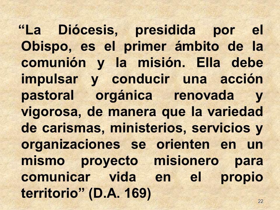La Diócesis, presidida por el Obispo, es el primer ámbito de la comunión y la misión.