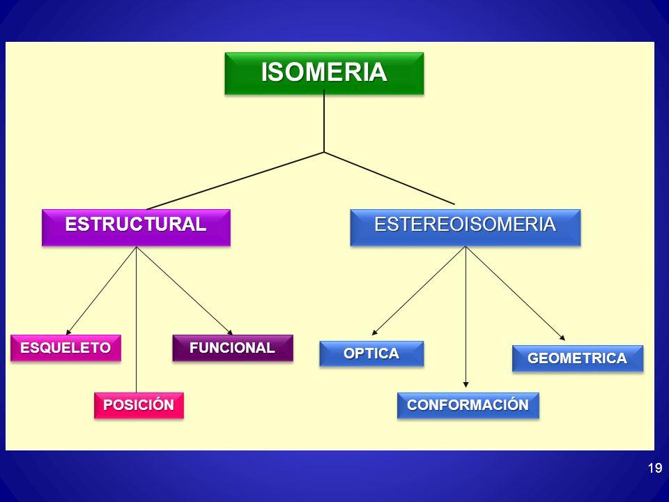 ISOMERIA ESTRUCTURAL ESTEREOISOMERIA ESQUELETO FUNCIONAL OPTICA