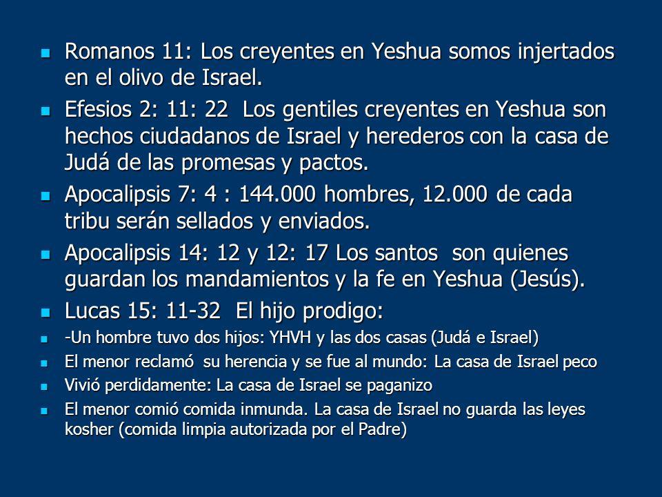 Lucas 15: 11-32 El hijo prodigo: