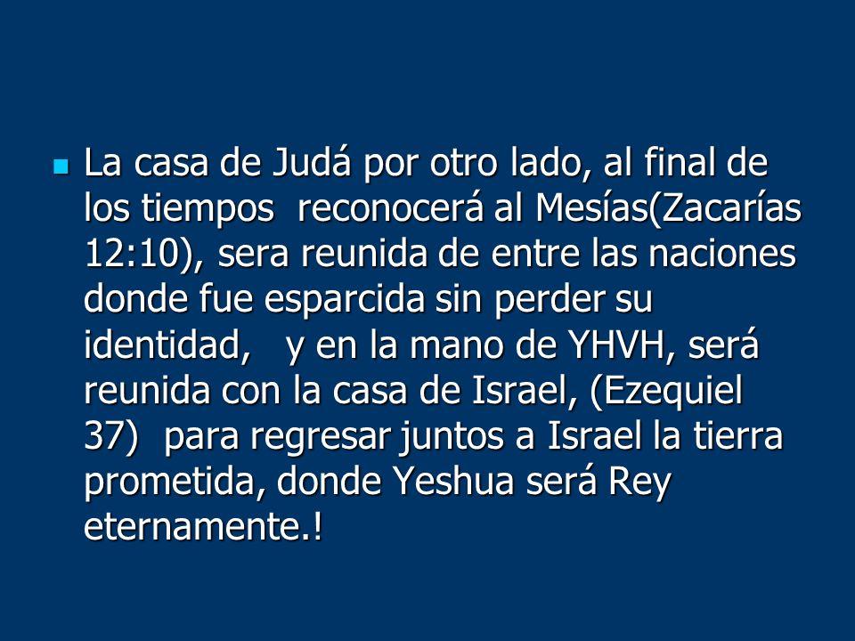 La casa de Judá por otro lado, al final de los tiempos reconocerá al Mesías(Zacarías 12:10), sera reunida de entre las naciones donde fue esparcida sin perder su identidad, y en la mano de YHVH, será reunida con la casa de Israel, (Ezequiel 37) para regresar juntos a Israel la tierra prometida, donde Yeshua será Rey eternamente.!