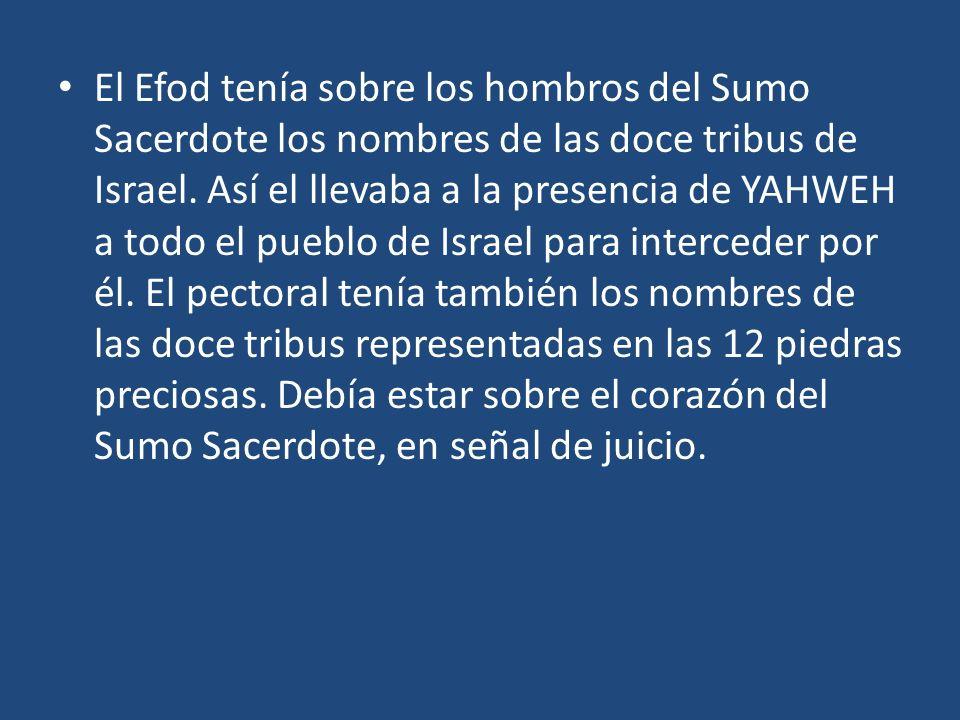 El Efod tenía sobre los hombros del Sumo Sacerdote los nombres de las doce tribus de Israel.