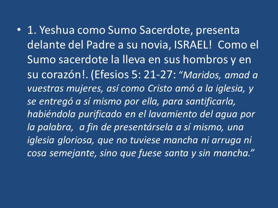 1.Yeshua como Sumo Sacerdote, presenta delante del Padre a su novia, ISRAEL.