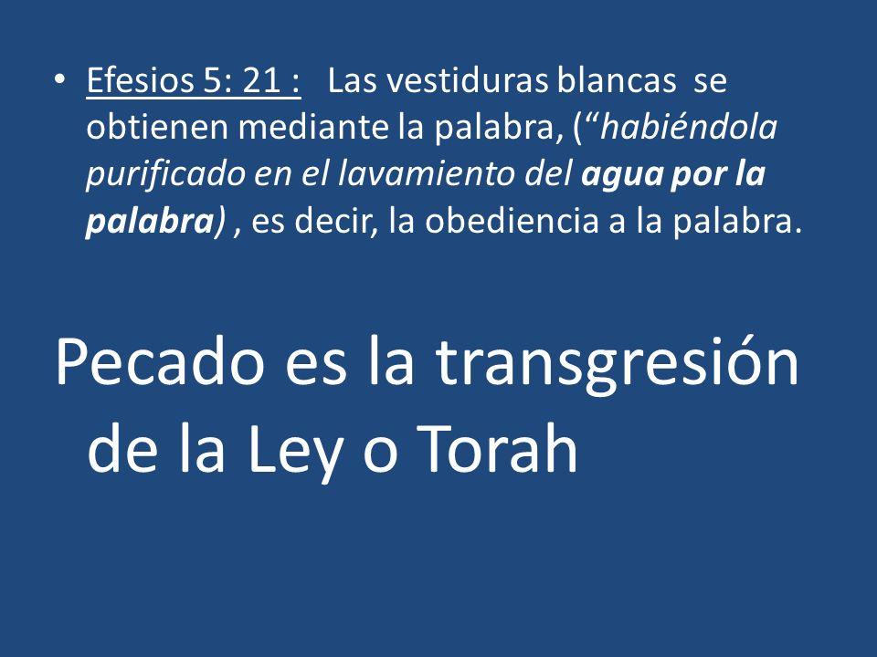 Pecado es la transgresión de la Ley o Torah