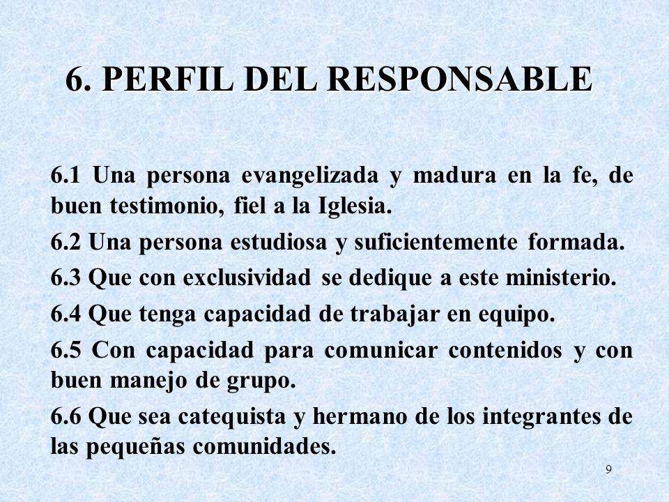 6. PERFIL DEL RESPONSABLE