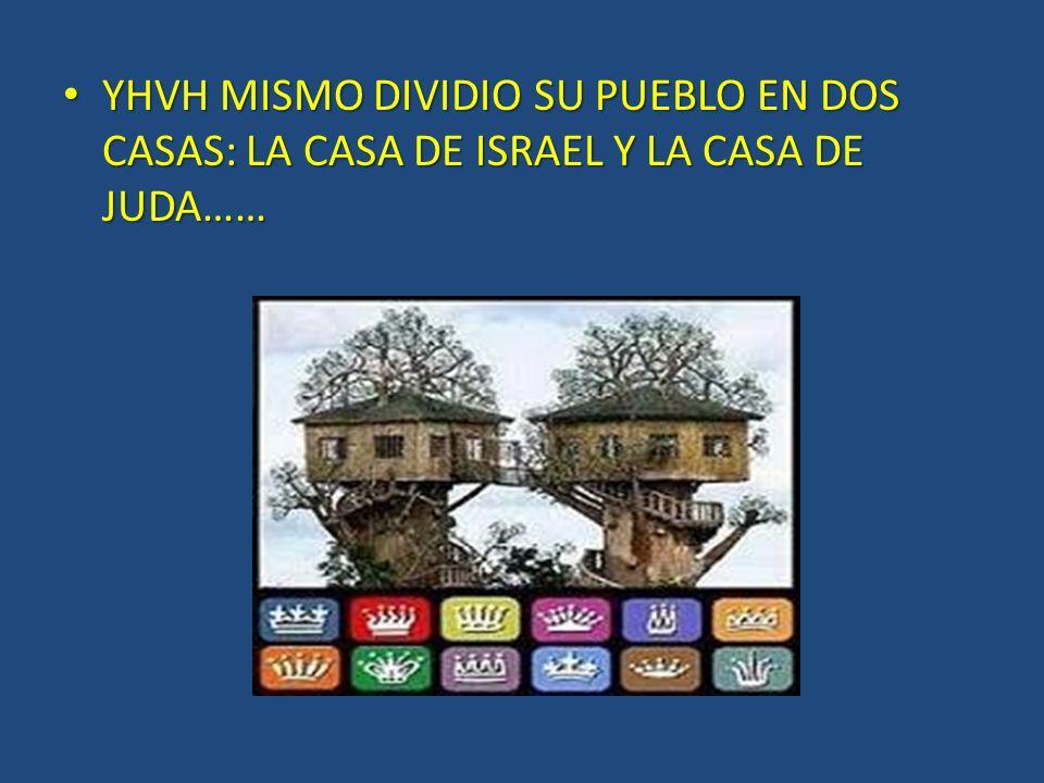 YHVH MISMO DIVIDIO SU PUEBLO EN DOS CASAS: LA CASA DE ISRAEL Y LA CASA DE JUDA……