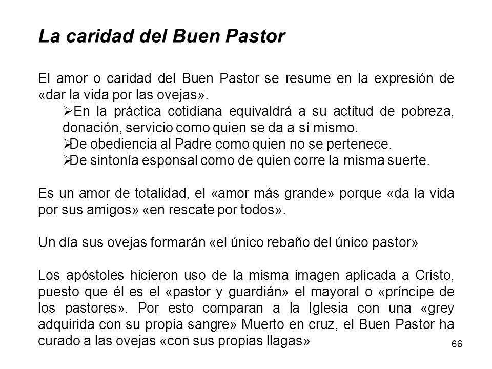 La caridad del Buen Pastor