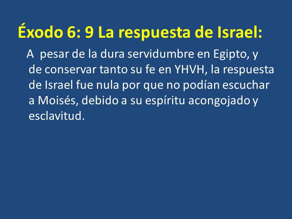 Éxodo 6: 9 La respuesta de Israel: