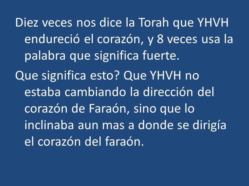 Diez veces nos dice la Torah que YHVH endureció el corazón, y 8 veces usa la palabra que significa fuerte.