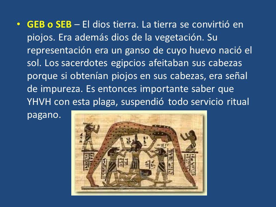 GEB o SEB – El dios tierra. La tierra se convirtió en piojos