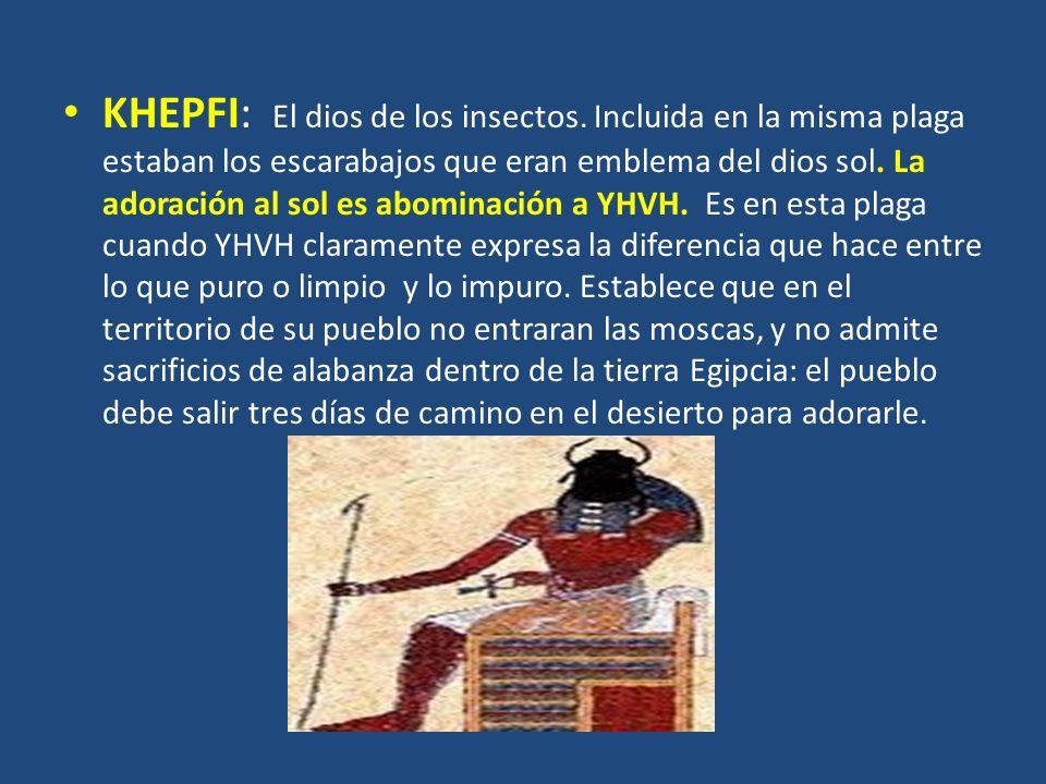 KHEPFI: El dios de los insectos