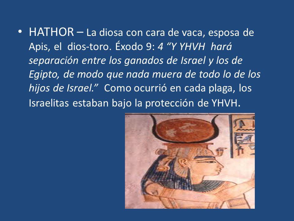 HATHOR – La diosa con cara de vaca, esposa de Apis, el dios-toro