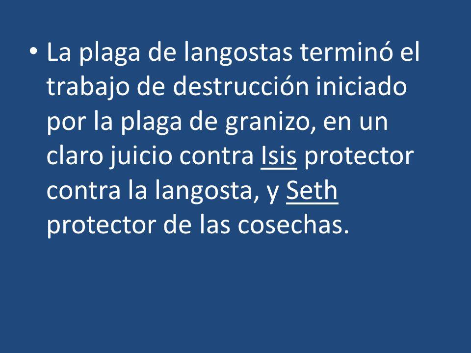 La plaga de langostas terminó el trabajo de destrucción iniciado por la plaga de granizo, en un claro juicio contra Isis protector contra la langosta, y Seth protector de las cosechas.