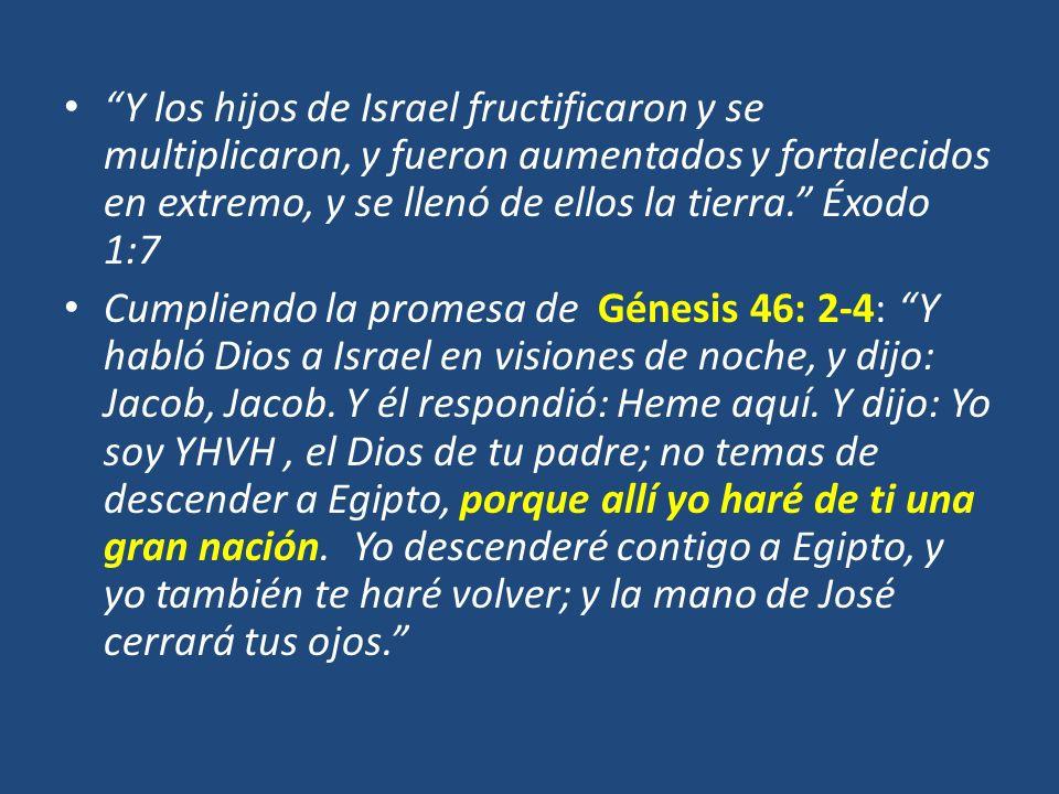 Y los hijos de Israel fructificaron y se multiplicaron, y fueron aumentados y fortalecidos en extremo, y se llenó de ellos la tierra. Éxodo 1:7