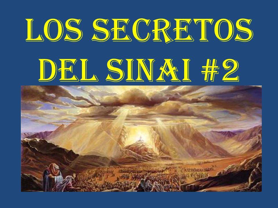 LOS SECRETOS DEL SINAI #2